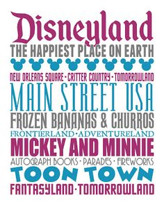 Disneyland represented on a cool looking infographic type paper.