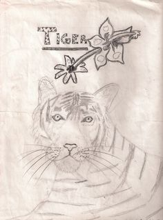 I did this sketch in 2007ish; I absolutely adore tigers!!!