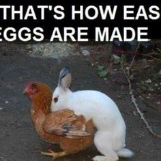 314. THE SECRET OF EASTER EGGS!