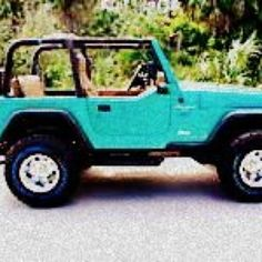 Ride in a Jeep without the doors.
