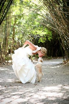 bride + dog = love