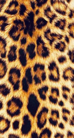 Don't forget the importance of texture of everything, it is of the most powerful things Iphone Wallpaper Images, Homescreen Wallpaper, Iphone Background Wallpaper, Cellphone Wallpaper, Cute Wallpapers, Cheetah Print Wallpaper, Pink Wallpaper, Mobile Wallpaper, Pattern Wallpaper