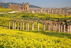 Scoprite Jerash e altre località molto interessanti nella Giordania in un preventivo di 5 giorni http://italiano.memphistours.com/Giordania/Pacchetti-Viaggi/Pacchetti-Giordania/Tour-Giordania-per-tutte-le-tasche