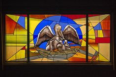 Pelicans Stained Glass Photograph  - Pelicans Stained Glass Fine Art Print