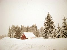 A classic image of a winter in Norway. This looks like paradise to me.