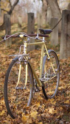 Beautiful Chapman city bike with lever actuated rim dynamo. Classic.