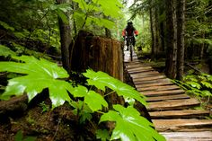 Whistler Mountain Bike Park, BC.