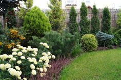 Minął kolejny sezon ogrodniczy Zielonej Fali. Był to czas pełen pracy i satysfakcji. W wyniku nawiązywania licznych kontaktów oraz coraz większej świadomości dotyczącej roli jaką architekt krajobra...