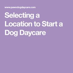 Selecting a Location to Start a Dog Daycare