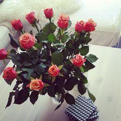 Цветы как цветы, розы как розы. Ничего особенного