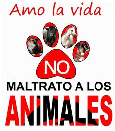 NO al maltrato animal Amor Animal, Mundo Animal, Animals Of The World, Animals And Pets, Miss My Best Friend, Stop Animal Cruelty, Pet Life, Faith In Humanity, Dog Quotes