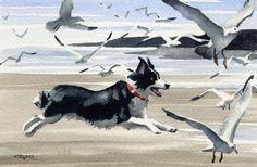 BORDER COLLIE Dog Signed Art Print by Artist DJ by k9artgallery, $12.50