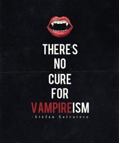 The Vampire Diaries - Stefan Salvatore Vampire Diaries Wallpaper, Vampire Diaries Quotes, Vampire Diaries Cast, Vampire Diaries The Originals, Vampire Quotes, Tvd Quotes, Vampire Love, Vampire Art, Vampire Kiss