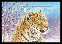 Endangered Species was issued in 2009. The Amur Leopard is the world's rarest cat, it is reported there are less than 40 individuals remaining in the wild. #endangered #leopard http://www.wopa-stamps.com/index.php?controller=country&action=stampRelatedIssue&id=871
