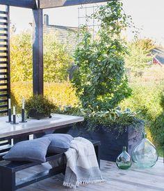 """Fotograf Malin Björkholm på Instagram: """"Förra året byggde vi möbler och blomlådor modell större till altanen. Kul att skapa något eget och betydligt billigare än vad som finns att köpa. I Fixa vår @alltomtradgard kan ni nu se hur vi har gjort. #trädgård #altan #patio #garten #garden #hage #have #betong #diy #klematis #hosta #muehlenbeckia #alltomträdgård #fixa"""" Outside Living, Outdoor Living, Living Environment, Contemporary Garden, Garden Styles, Container Gardening, Outdoor Spaces, Outdoor Gardens, Pergola"""