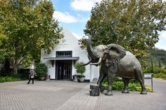 Franschhoek, Western Cape, South Africa | by South African Tourism