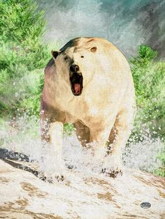 Charging Polar Bear  A polar bear charges at you.  Its powerful snapping jaws open in a great roar as it barrels towards you kicking up snow in every direction.  Meanwhile, snow falls from the dark clouds of the Northern skies in this digitally created Impressionist image of the fiercest carnivore of the Arctic.
