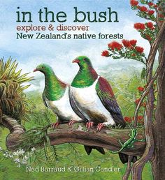 In the Bush: explore and discover New Zealand's native forests by Gillian Candler, illustrated by Ned Barraud. The fourth book in our explore and discover series looking at ecosystems in New Zealand for young children (and their parents and grandparents). Nonfiction Books For Kids, Forest Ecosystem, Book Illustration, Natural World, The Great Outdoors, New Zealand, Childrens Books, Nativity, Wildlife