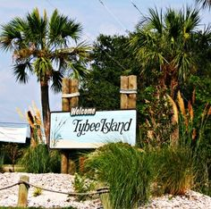 "Tybee for a Day l Visit Tybee Savannah's BeachVisit Tybee – Tybee Island, Georgia ""Savannah's Beach"""
