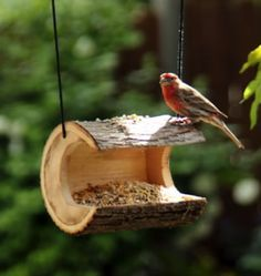 Woodworking plans for bird houses and bird feeders. Mount on windows with suction cups and watch birds eat and make nests. Make bird houses from logs Bird House Feeder, Diy Bird Feeder, Unique Bird Feeders, Squirrel Feeder, Outdoor Projects, Garden Projects, Wood Projects, Homemade Bird Houses, Bird Houses Diy