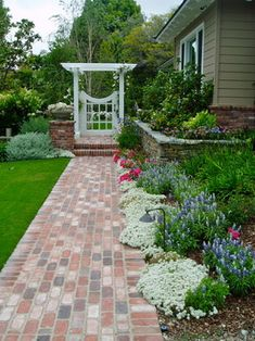 A traditional backyard with a pavingstone walkway framed with white alyssum, blue salvia and brightly coloured carpet roses. The white gated trellis offers and inviting welcome with the fragrant climbing roses and overflowing low planter sitting on the brick pillar unifies the white flowers on the ground and trellis.