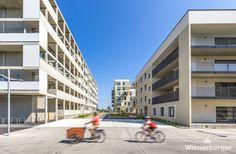 Spatenstich im Stadteil Seestadt Vienna, Street View, Architecture, Building, City, Haus, Arquitetura, Buildings, Architecture Illustrations