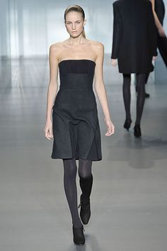 Calvin Klein Collection Fall 2008 Ready-to-Wear Fashion Show - Ali Stephens