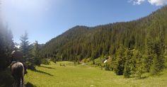 A Wilderness Trail Trip