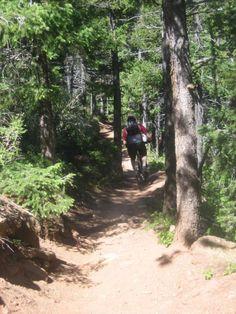Mountain Bike trails in and around Colorado Springs SINGLETRACKS.COM