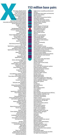 Chromosome X: Human Genome Landmarks Poster Ap Biology, Science Biology, Teaching Biology, Medical Science, Science Lessons, Science Education, Life Science, Biology Classroom, Science Notes