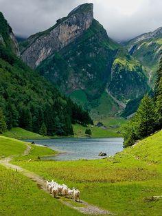 Switzerland. #SwissBiscuits #Cookies #Holiday