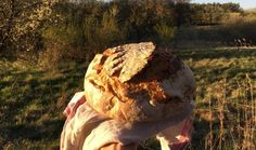 Dostali jste kvas a nevíte, co s ním? Upečte chleba a začněte bochníkem pomoučeným, pšenično-žitným s vůní kmínu, známým také jako Šumava. Podle návodu Juliany Fischerové alias Maškrtnice to zvládnete napoprvé i na chalupě v remosce. #recept #chleba #kvasek #kvaskovychleb #peceni #pecenijeradost #recipe #bake #bread Garden Sculpture, Outdoor Decor, Food, Cast On Knitting, Eten, Meals, Diet