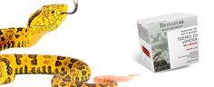Bionature crema antirughe al siero di Vipera: funziona davvero? Recensioni, opinioni e dove comprarlo