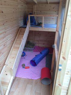 Image result for rabbit shed
