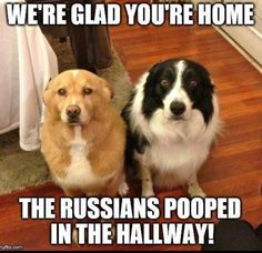 The Russians pooped in the hallway