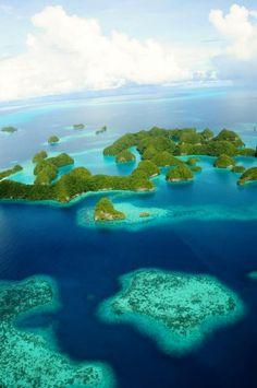 Palau Honeymoon. Right, joel?