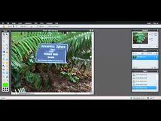 Pixlr clone stamp tool