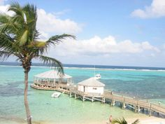 Of my travels so far, Grand Cayman Island is definitely one of my most favorite and beautiful spots to have been lucky enough to visit : ) Vacation Places, Vacation Trips, Vacation Spots, Dream Vacations, Grand Cayman Island, Cayman Islands, Nyc, Island Beach, Snorkeling