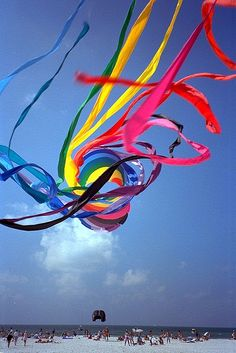 Kites are Fun! Clearwater Beach Florida