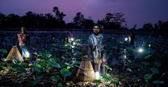 These Simple Solar Lamps Are Changing Lives For Poor Areas That Can't Wait For A Power Grid