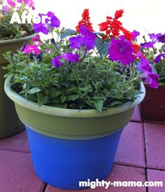 Paint A Plastic Flower Pot Use Rust Oleum Satin Spray