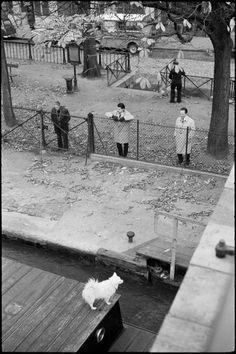 Paris automne 1963, par Andre Kertesz - lock (écluse) on canal St-Martin
