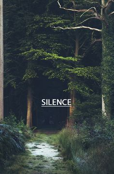 silence, beautiful silence