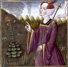 XVII-Médée, reine de Colchide, pratiquant la magie (MEDEA, queen of Colchis) -- Giovanni Boccaccio (1313-1375), Le Livre des cleres et nobles femmes, v. 1488-1496, Cognac (France), traducteur anonyme. -- Illustrations painted by Robinet Testard -- BnF Français 599 fol. 16v