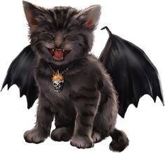 Halloween Pictures, Halloween Art, Halloween Designs, Baby Cats, Cats And Kittens, Animal Pictures, Cute Pictures, Happy Halloweenie, Magic Cat