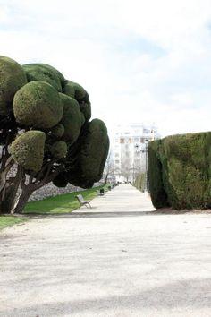 Madrid, Spain, Park de Retiro, Travel, Betsy Harder Photo
