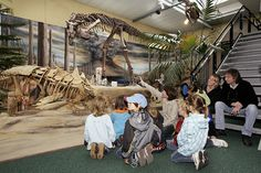 Dinosaur musuem at night with flashlights - Sauriermuseum Aathal Rainy Day Activities For Kids, Tours, Museums, Switzerland, Night, Museum