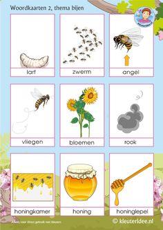 Woordkaarten voor kleuters, thema bijen 2, juf Petra van kleuteridee, Preaschool bees theme, free printable