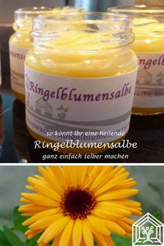 Ringelblumensalbe ganz einfach selbst gemacht - hier gehts zum Rezept!