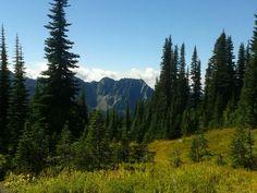 Paradise. Mount Rainier NP.  18 september 2016.